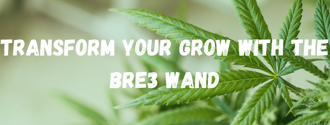 Transform Your Grow With The BRe3 Wand